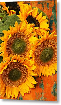 Bunch Of Sunflowers Metal Print by Garry Gay