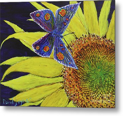 Butterfly Haven Metal Print