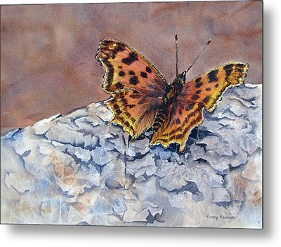 Butterfly-in-the-old-growth-forest Metal Print by Nancy Newman