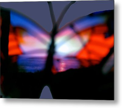 Butterfly Sunsets Collection  Metal Print by Debra     Vatalaro