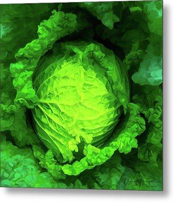 Cabbage 02 Metal Print by Wally Hampton
