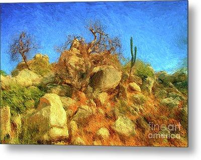 Cabo Park Landscape Metal Print by Gerhardt Isringhaus