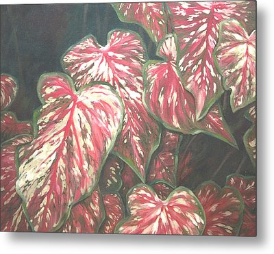 Caladiums Metal Print by Linda Eades Blackburn