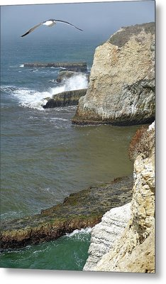 Cali Coast Shark Fin Cove 8 Metal Print