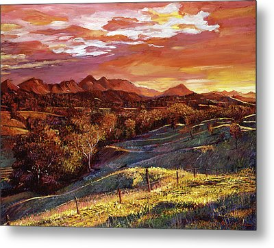 California Dreaming Metal Print by David Lloyd Glover