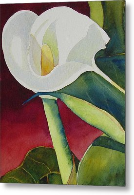 Calla I Metal Print by Judy Mercer
