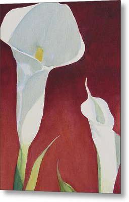 Calla II Metal Print by Judy Mercer