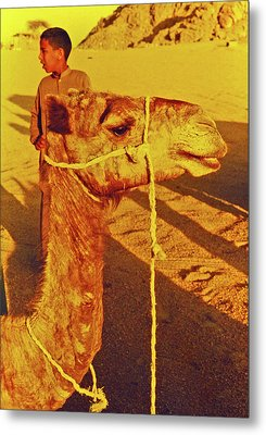 Camel Ride Metal Print