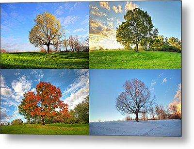 Canadian Seasons Metal Print by Mircea Costina Photography