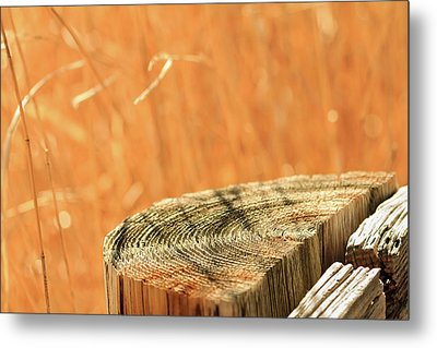 Cantigny Fence Post Metal Print by Joni Eskridge