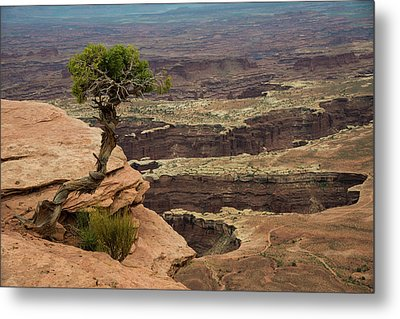 Metal Print featuring the photograph Canyonlands by Gary Lengyel