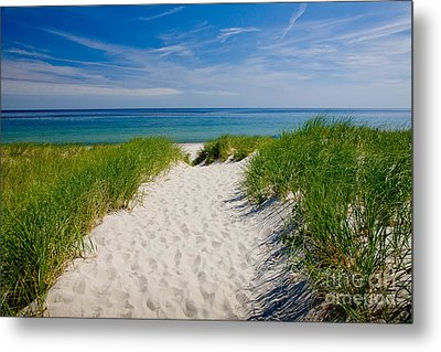 Cape Cod Bay Metal Print by Susan Cole Kelly