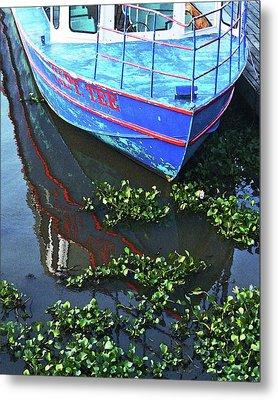 Cap'n Tee Henderson Swamp Metal Print by Lizi Beard-Ward