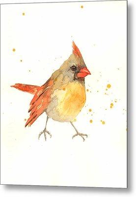 Cardinal - Female Cardinal Metal Print