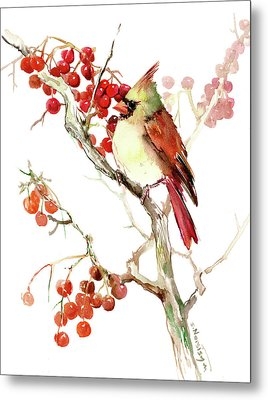 Cardinal Bird And Berries Metal Print