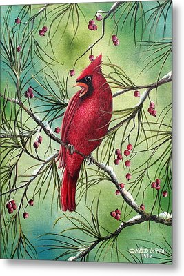 Cardinal Metal Print by David G Paul