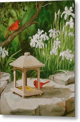 Cardinals Feeding Metal Print by Faye Ziegler