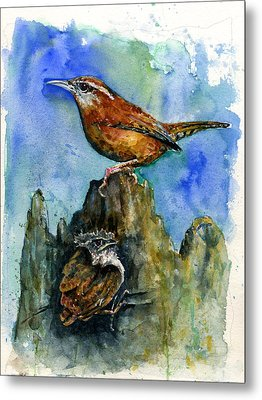 Carolina Wren And Baby Metal Print by John D Benson