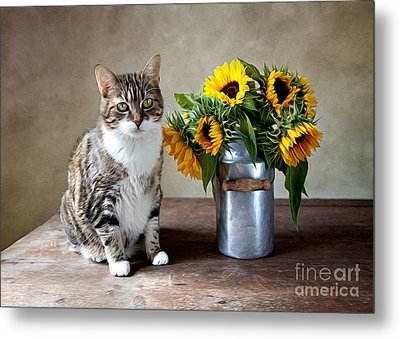 Cat And Sunflowers Metal Print