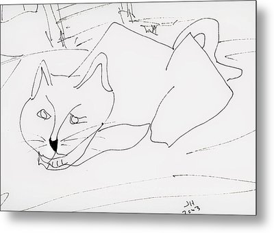 CAT Metal Print by Jerry Hanks