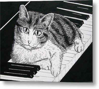 Cat On Piano Metal Print