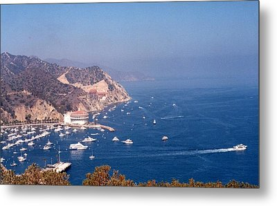 Metal Print featuring the photograph Catalina Calif............ by Tanya Tanski