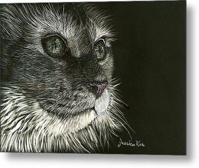 Cat's Gaze Metal Print by Jessica Kale