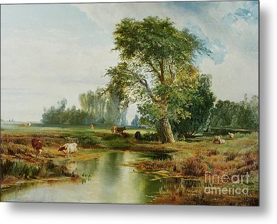 Cattle Watering Metal Print by Thomas Moran