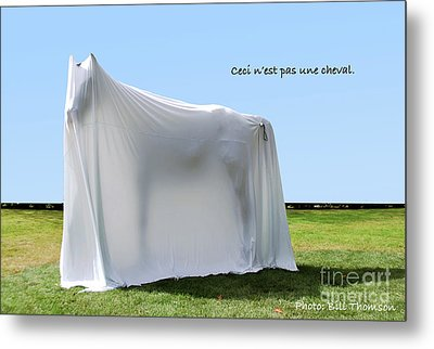 Metal Print featuring the photograph Ceci N'est Pas Une Cheval by Bill Thomson