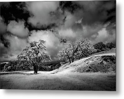 Central California Ranch Metal Print