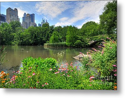 Central Park Metal Print by Kelly Wade
