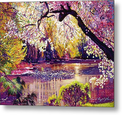 Central Park Spring Pond Metal Print by David Lloyd Glover