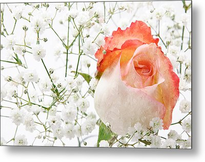 Cherish Metal Print by Andee Design