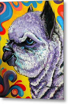 Metal Print featuring the painting Cheshire Alpaca  by Patty Sjolin