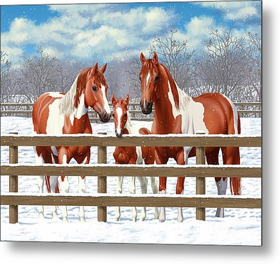 Chestnut Paint Horses In Snow Metal Print by Crista Forest