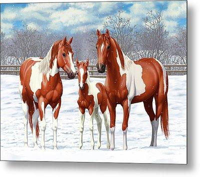 Chestnut Paint Horses In Winter Pasture Metal Print