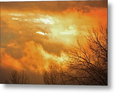 Metal Print featuring the photograph Christmas Morning Sunrise by Diane Alexander