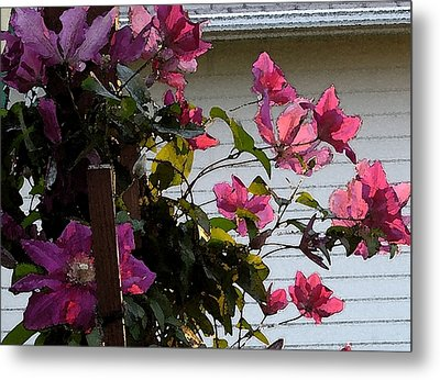 Metal Print featuring the painting Clematis by Susan Fisher