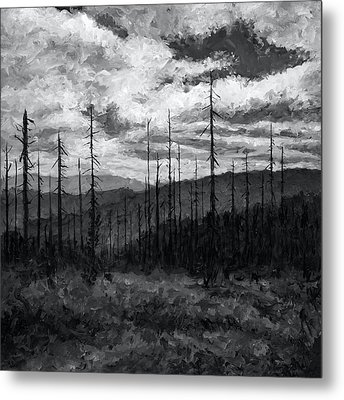 Cloudscape 3 Metal Print