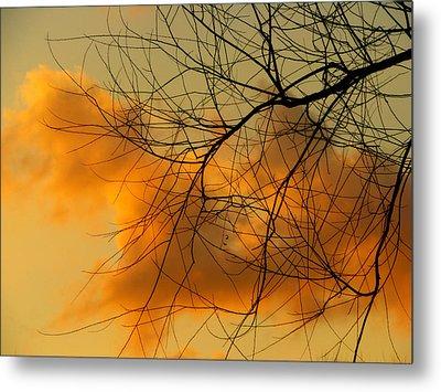 Cloudy Silhouette Metal Print by Dottie Dees