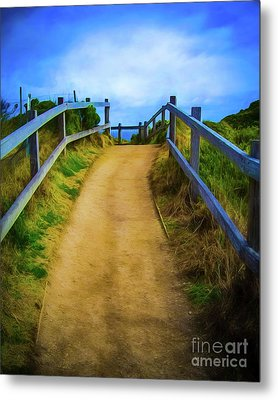 Metal Print featuring the photograph Coast Path by Perry Webster