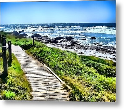 Metal Print featuring the photograph Coast Trail At Pebble Beach by Kathy Tarochione