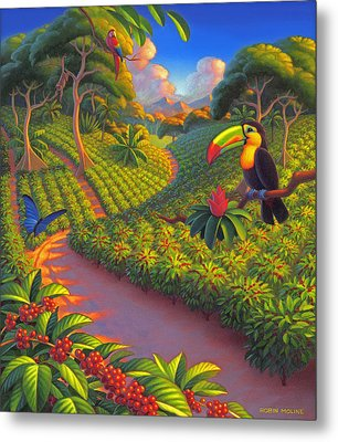 Coffee Plantation Metal Print