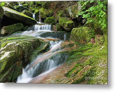 Cold Brook - Randolph New Hampshire Metal Print by Erin Paul Donovan