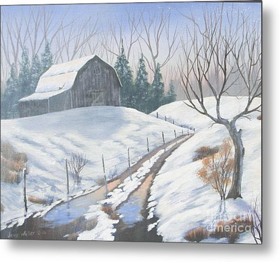 Cold Country Metal Print