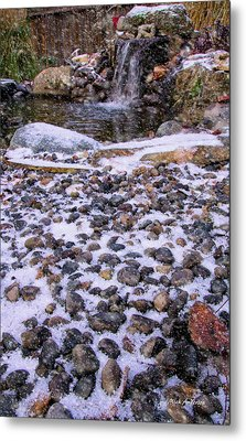 Cold Day At The Pond Metal Print by Mick Anderson