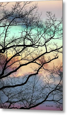Cold Hearted Bliss Metal Print by Christina Rollo