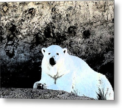 Cold Night Metal Print by Tammy Sutherland