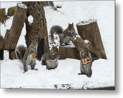 Cold Weather Can't Stop A Good Band Metal Print by Dan Friend