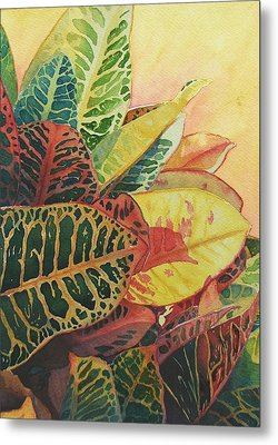 Metal Print featuring the painting Color Of Crotons by Judy Mercer